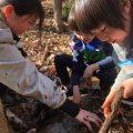 【自然保育セミナー⑧/オンライン講座】自然の中で得られる子どもたちの運動能力について